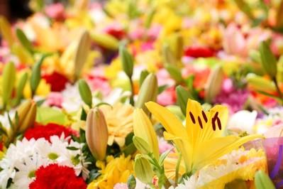 Język kwiatów - sprawdź zanim wręczysz!
