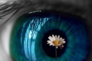 Choroby oczu – objawy, przyczyny, leczenie.