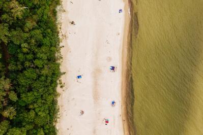 Sinice w Bałtyku 2020: rodzice uważajcie, tam nie wolno się kąpać w morzu