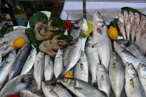 Termiczna trwałość kwasów omega-3
