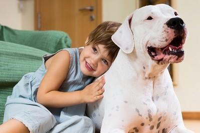 Pies w rodzinie z dzieckiem. O wzajemnych korzyściach dla człowieka i zwierzaka!