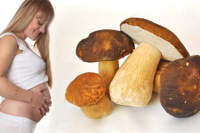 Grzyby w ciąży - Czy można je jeść?