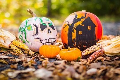 Lampion z dyni: Co zrobić żeby dynia na Halloween nie gniła?