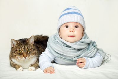 Kot i niemowlę w jednym domu