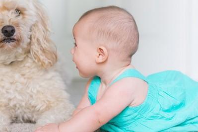 Niemowlę i zwierzęta domowe – jak zadbać o bezpieczeństwo w rodzinnym stadzie?