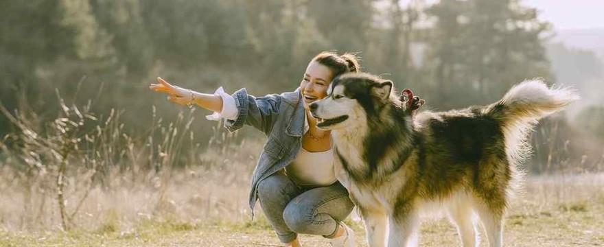 Alergicy nie muszą rezygnować z posiadania psa