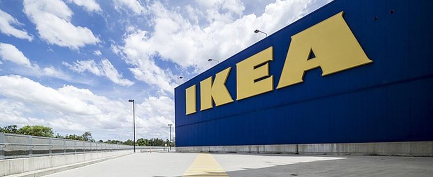 IKEA szokuje - larwy w burgerach?