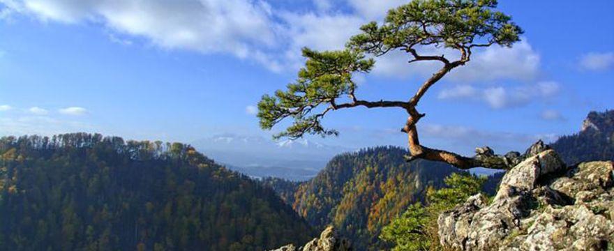 Polskie góry - gdzie jechać w góry?