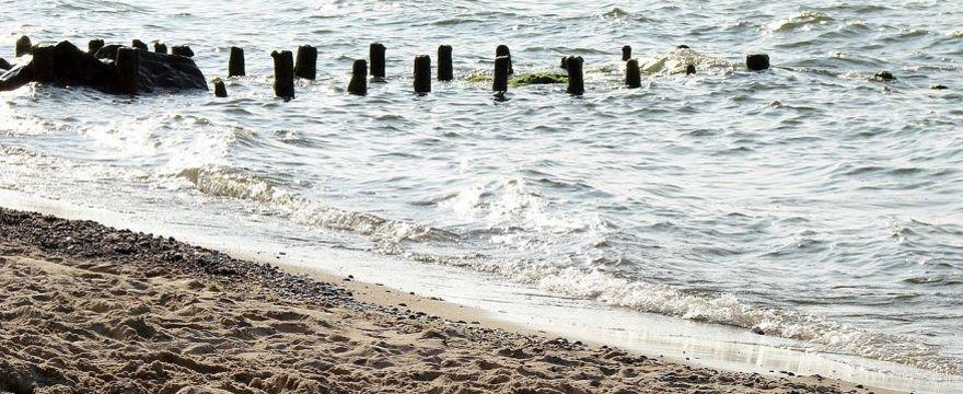 Uwaga na sinice: Sanepid ostrzega i zamyka kąpieliska! GDZIE są ZAKAZY kąpieli - zobacz