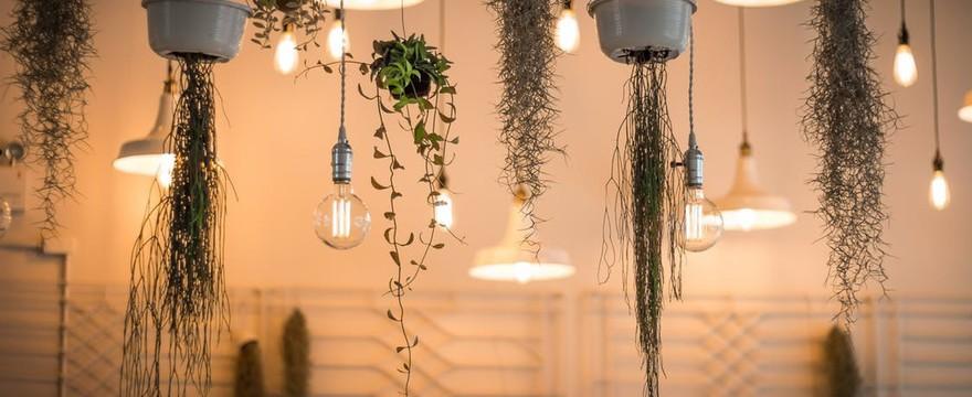 Oświetlenie wielofunkcyjne i wielozadaniowe – kinkiety, lampy wiszące i stołowe
