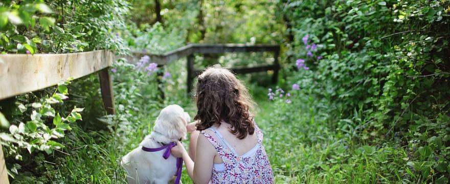 Pies w domu rodziny z dzieckiem. Dlaczego to dobry pomysł?