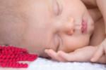 Szydełkowana ośmiornica pomaga wcześniakom w inkubatorach