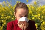 Alergia: czym jest alergia, jak ją stwierdzić. Kalendarz pylenia