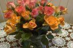 Jędrusiowe kwiatki.jpg
