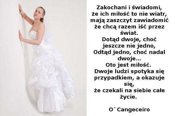Wierszyki Na Zaproszenia ślubne Zamiast Kwiatów Coś śmiesznego I W