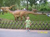 z dinozaurem w tle