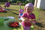 Lilla zabawa w małego ogrodnika -pierwsze zbiory